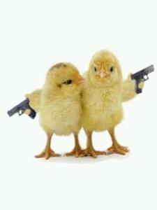 Funny chicken3
